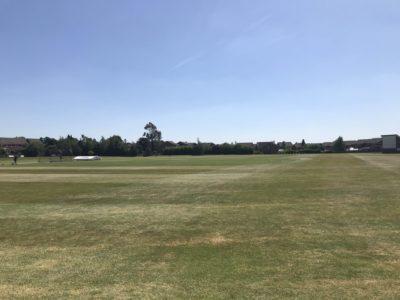 cricket lockdown