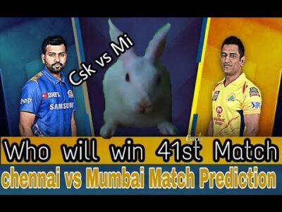 dream11 ipl2020 Srh vs Rr 41st match prediction by rabbit ||চেন্নাই  vs মুম্বাই  কে জিতবে?#csk_vs_Mi